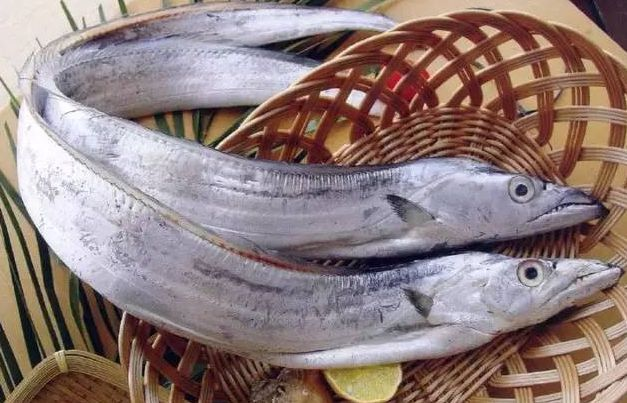 减肥能吃带鱼吗,带鱼热量高不高?